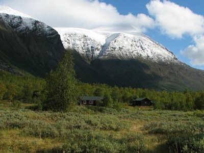 Picture of Såmmarlappa